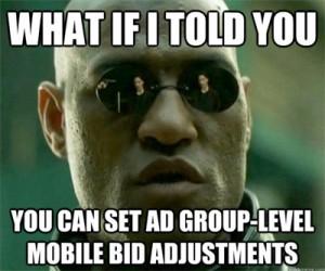 Mobile-bid-adjustment